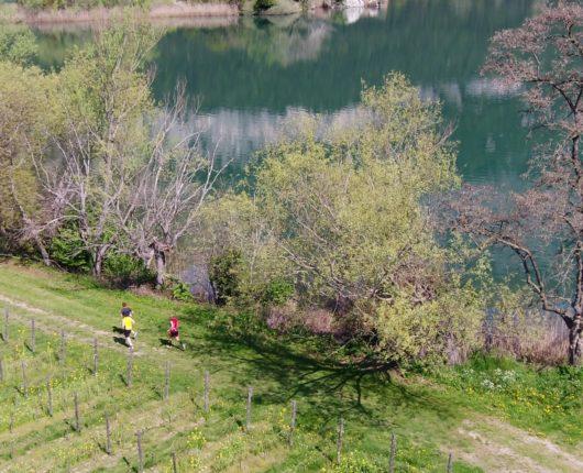 Riprese aeree con drone per DiViNosiola 2018 5