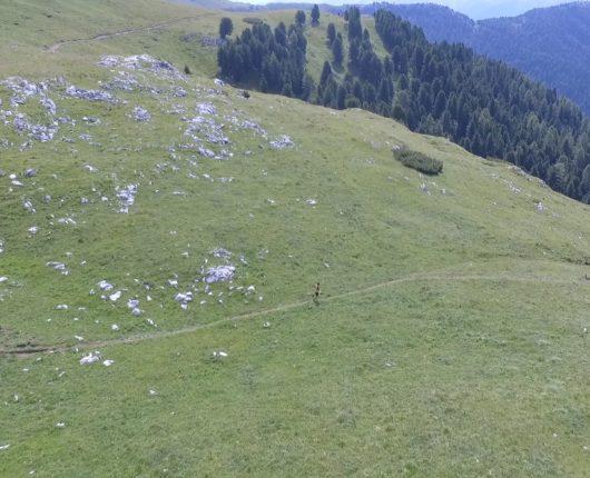 Video riprese aeree con drone per Roncon Vertical 2018 3
