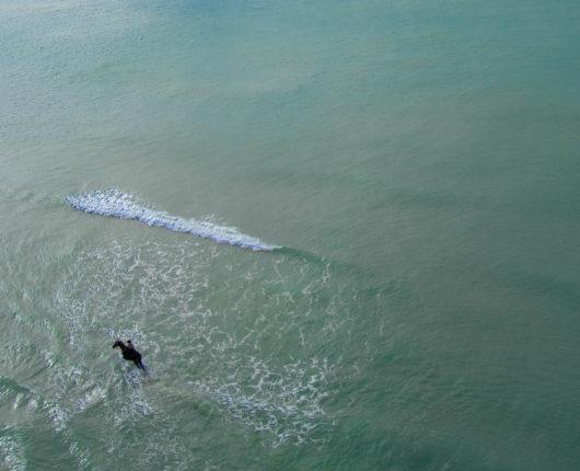 Riprese aeree con drone per Tuscany Adventure Times - horse
